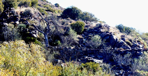 Aapsrivierpoort Old Road stone walling