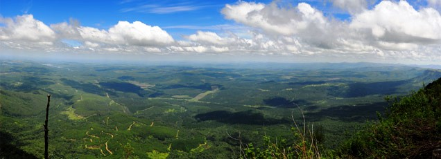 Forever iews over the Lowveld