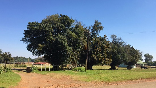 Farmstead at Tonteldoos