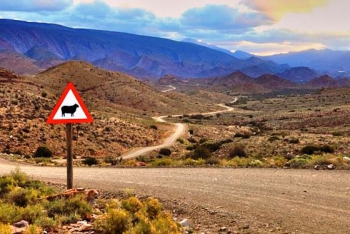 Long, dusty and winding roads of the Karoo