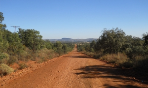 A gravel road surrounded by game reserves