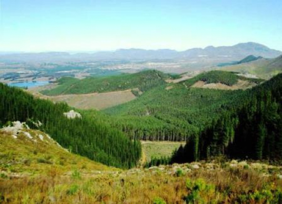 Views of the Elgin Valley
