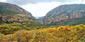 The Hamasha Gorge in Leshiba Wilderness Game Reserve