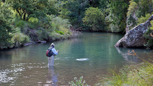 Fly fishing country