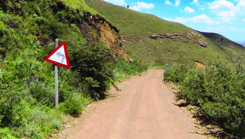 Eastern Cape road signs - You need to pay careful attention!