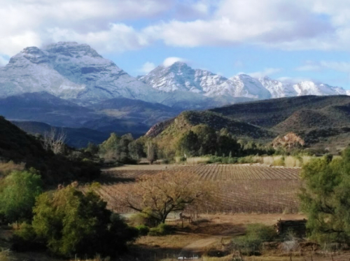 Snow covered peaks of the Klein Swartberg viewed from Vyversrus