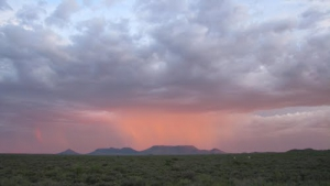 Welcome rains in the Hantam Karoo