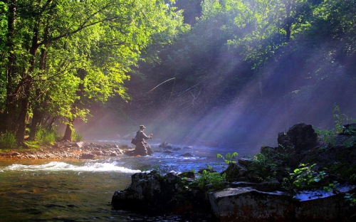 Lost in the savage beauty of fly-fishing