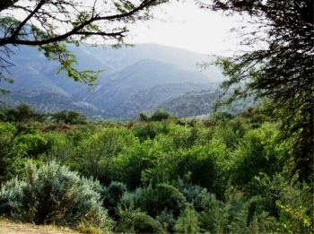 Enjoy the rugged Karoo scenery