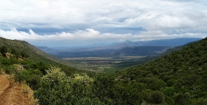 Buffelshoek Pass